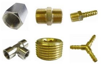 Brass Hosetails