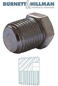 Plug NPTF Solid   Burnett & Hillman  Hydraulic Adaptor