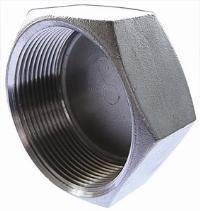 Cap Female Plug   316 Stainless Steel  BSPP Female Thread