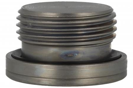 Blanking Plug - BSPP - Peflex Seal