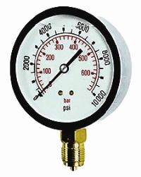 Cewal® 100mm Glycerine Filled Gauge - Bottom & Back Mounting   100mm Diameter  S/Steel Case